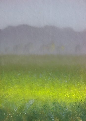Foggy landscape with yellow field